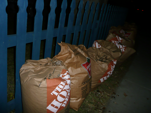 Leaf Collection in Kingston