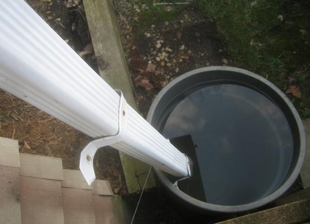 rain barrel in Kingston