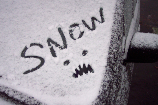 Snowmageddon, Winter storm, snow storm, blizzard, white out conditions, Kingston, Ontario
