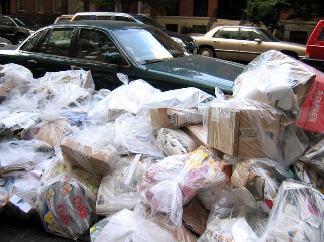 clear garbage bags, Kingston, Ontario