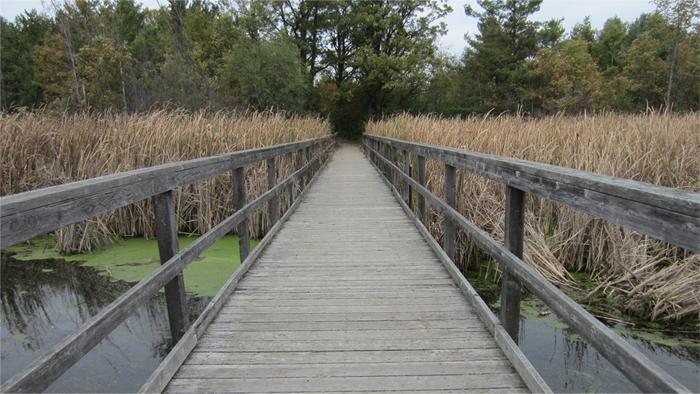 Kingston Trails, Little Cataraqui Creek Conversation Area