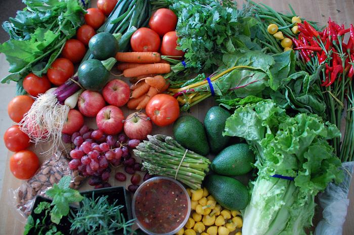 ygk challenge, healthy lifestyle