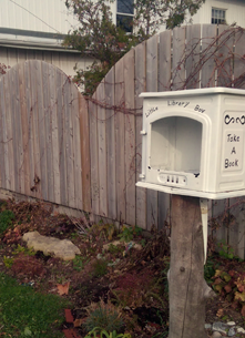 Little Free Library, Kingston, Division Street