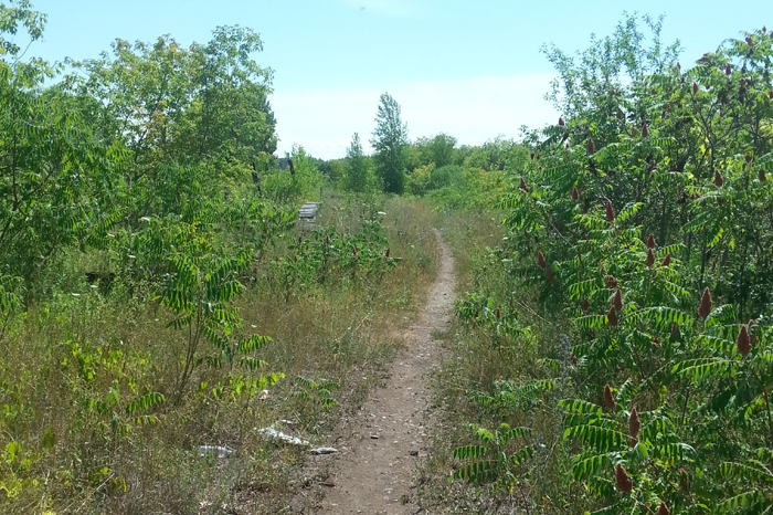 K&P Trail, kingston, ontario