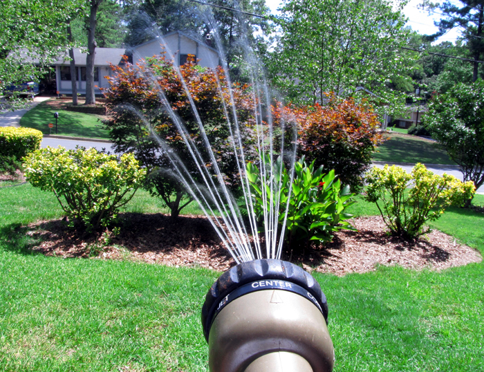 watering, trees, garden, bylaw, Kingston, Ontario