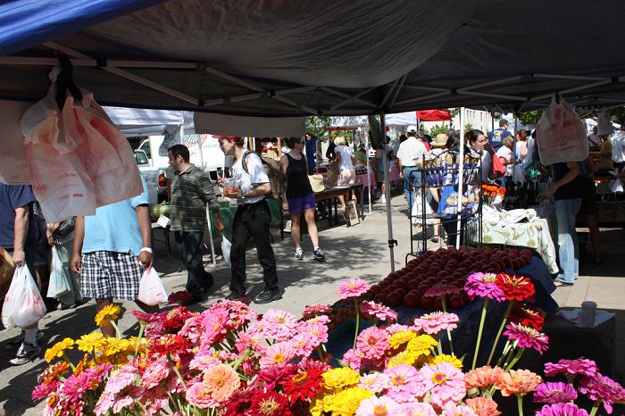 ygkchallenge, farmers' market, Kingston, Ontario