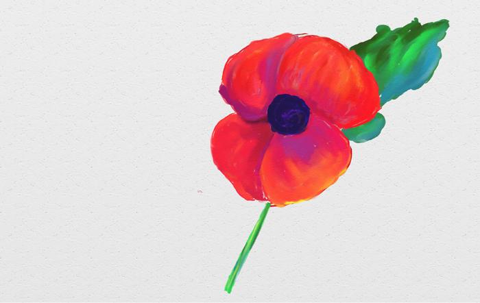 Remembrance Day 2016, Kingston, Ontario