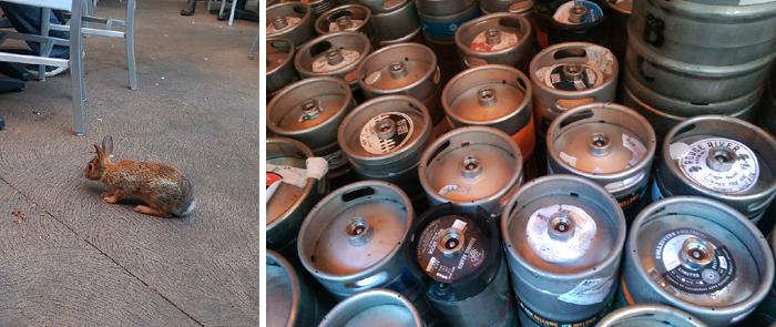 Kingston Brewing Company, Brew Pub, KBC