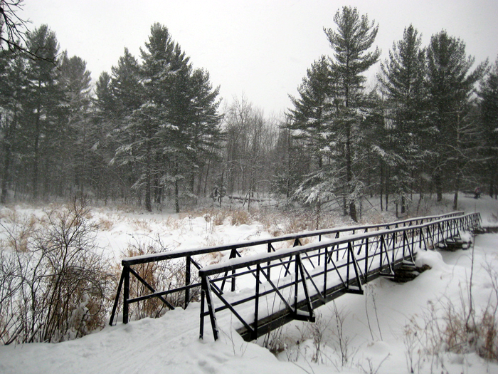 Best Trail in Kingston for a Winter Walk, Ontario