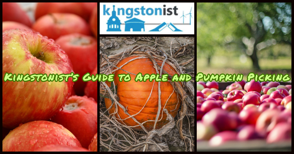 Kingston's guide to apple and pumpkin picking